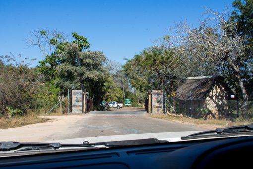 Sel drive no Kruger - Portão do camp Pretoriuskop e simples cerca de arame farpado.