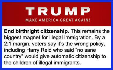 Image result for birthright citizenship in usa
