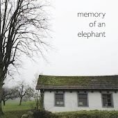 Memory of an Elephant