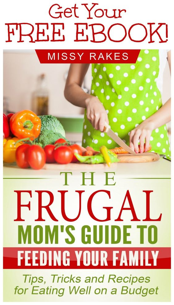 Ebook cover from The Frugal Mom's Guide to Feeding Your Family