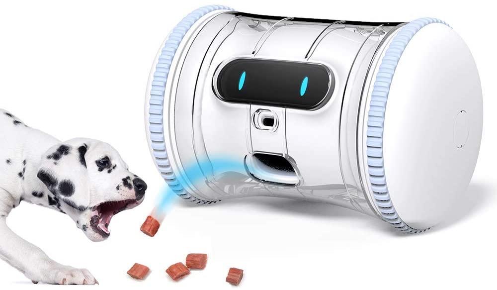 pet tech pet fitness robot