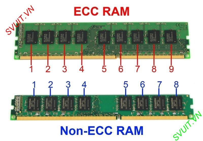 RAM ECC là gì (1)