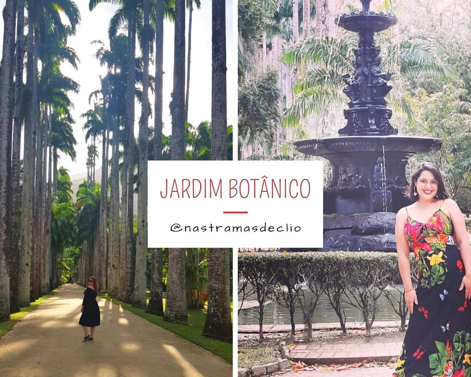 Fotografias do jardim botânico do Rio de Janeiro.