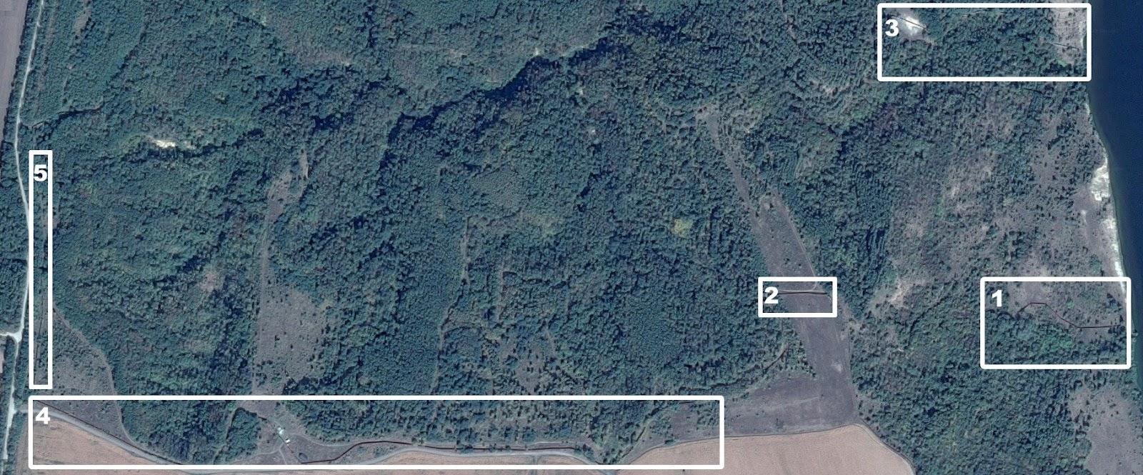 Лісовий масив, підконтрольний родині Хорошковських