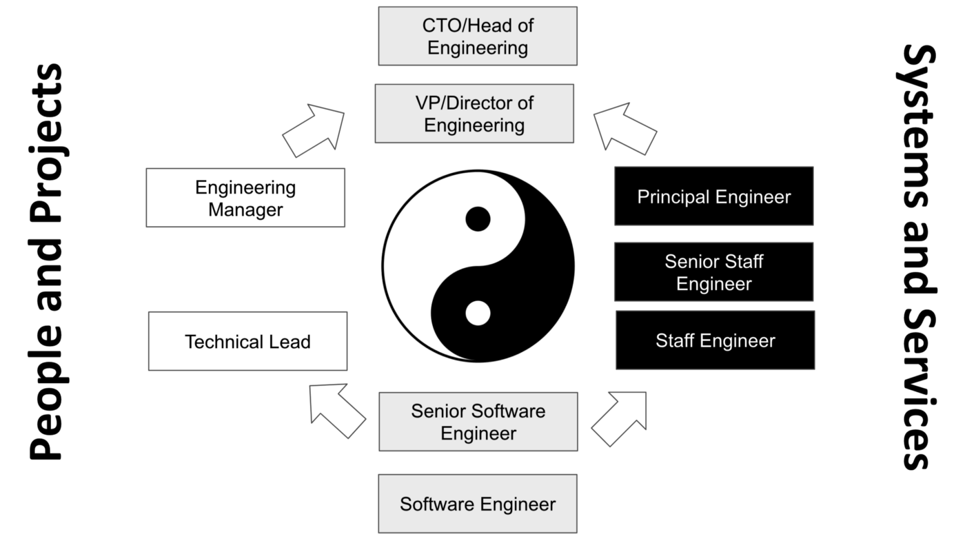 the dual career ladder - management path versus individual contributor path