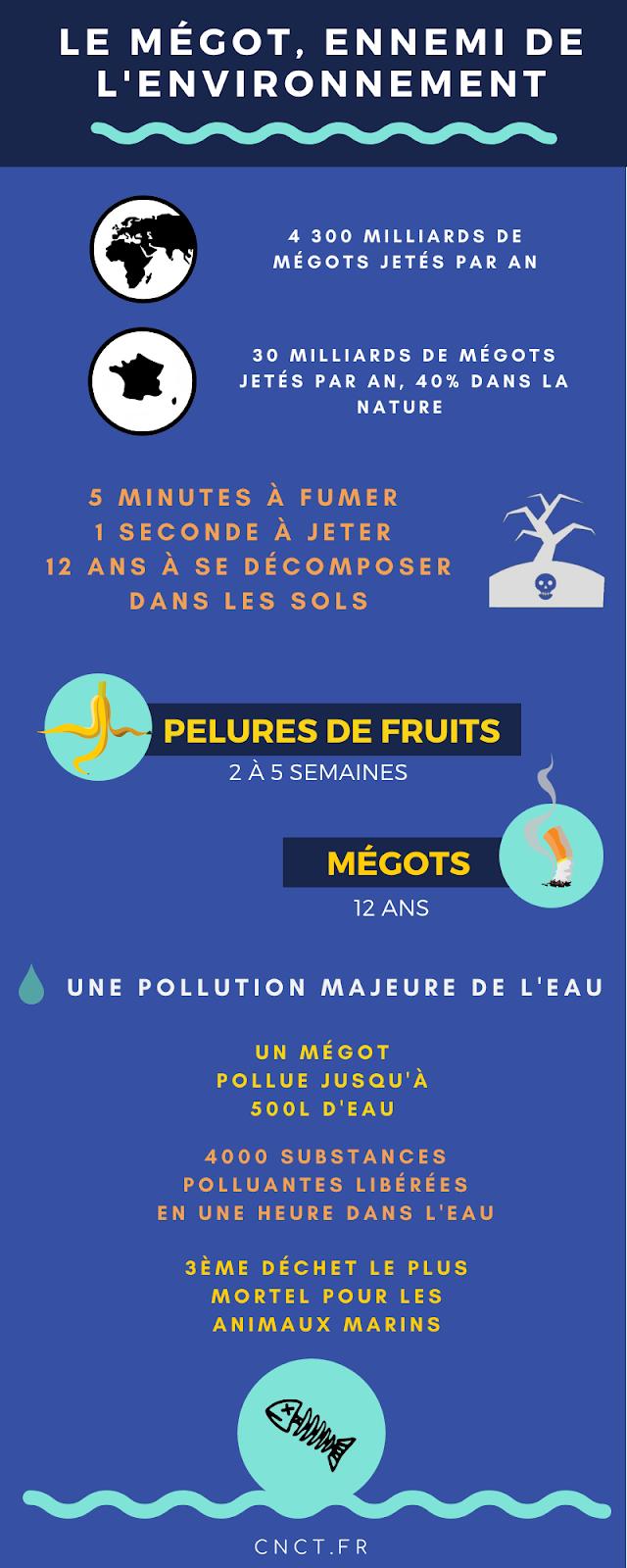 Pollution d'un mégot de cigarette infographie image