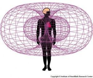 Energijsko polje srca