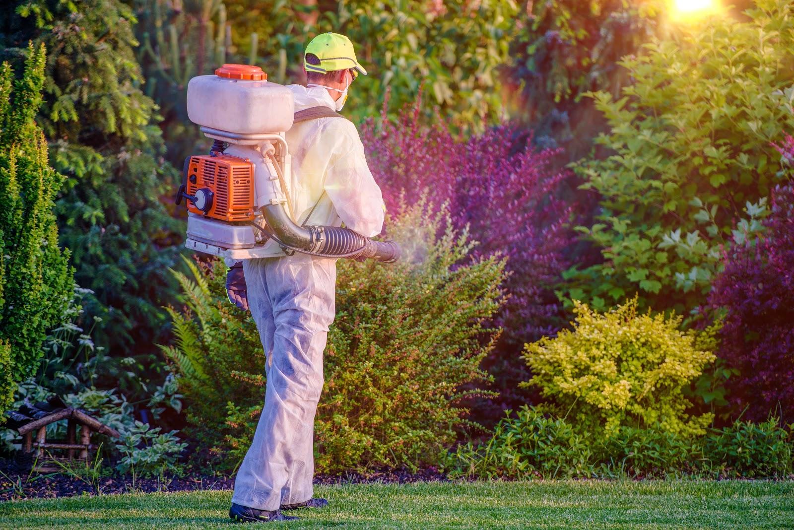 Um dedetizador exterminando pragas de um jardim.