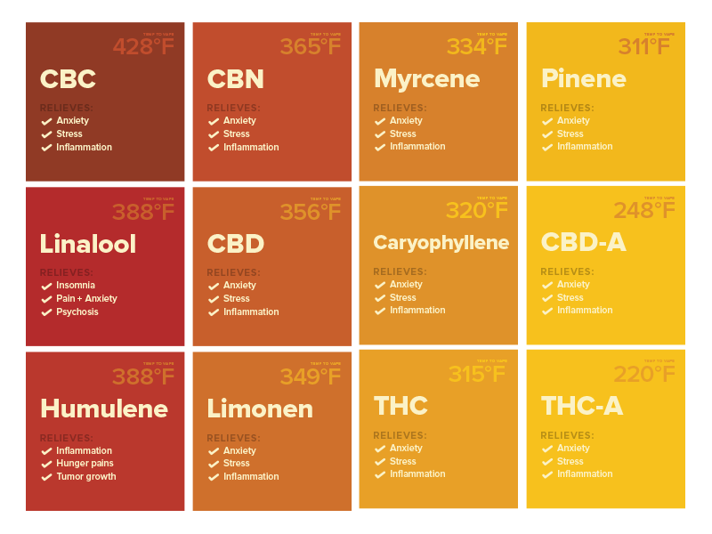 The Many Kinds of Medicinal Cannabinoids