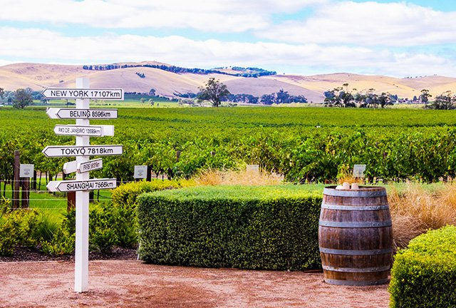 Barossa Valley Tours, Barossa Valley Tours From Adelaide, Barossa Wine Tours