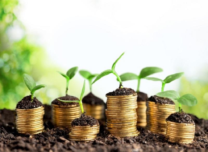 Nông dân tìm thêm các cơ hội khác để làm giàu