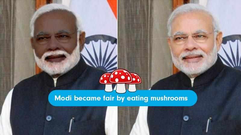 Image result for imported mushrooms modi