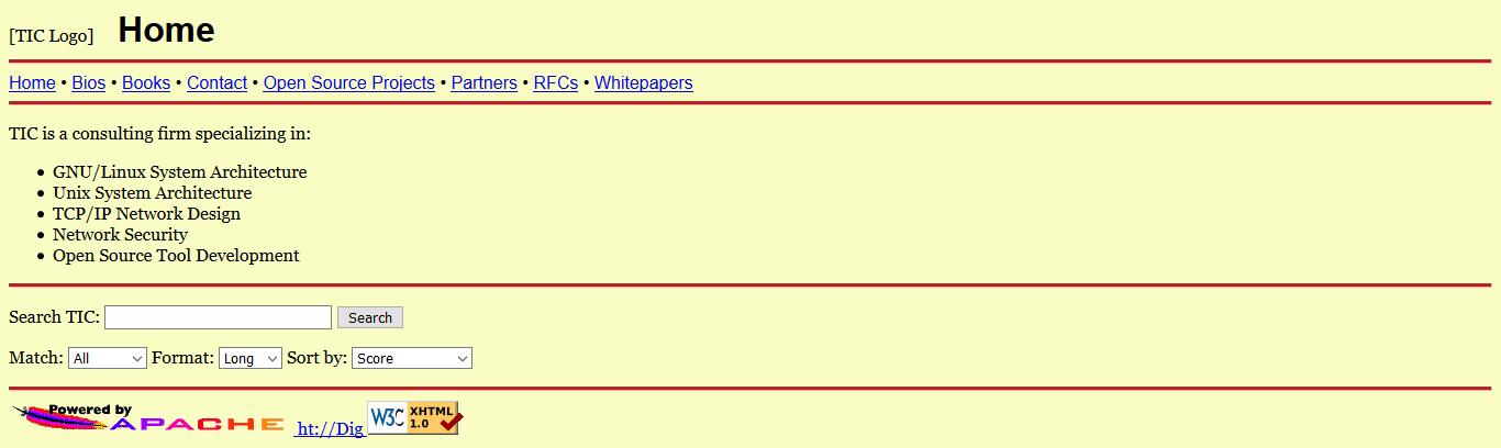 TIC.com oldest domain name screenshot.