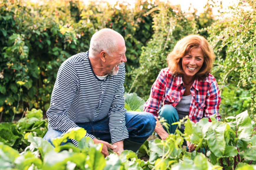 5 Yoga Stretches For Gardeners - Life Enriching Communities