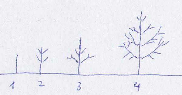 1,2,3,4.jpg