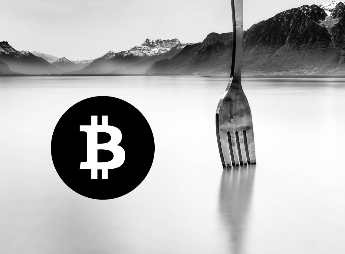 Bitcoin vs Bitcoin Cash: Which performs better? 3