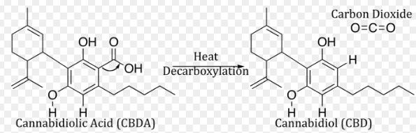 CBD acis and CBD decarboxylated