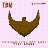 Tear Apart (Original Mix) (feat. Ruber)
