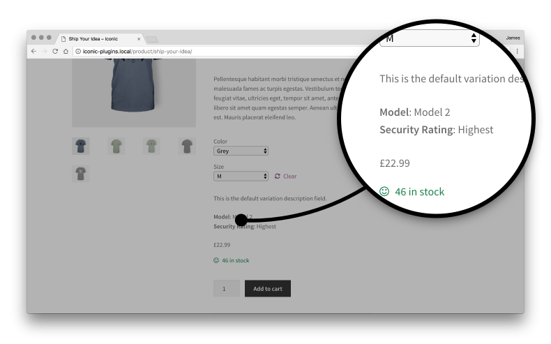 custom fields WooCommerce product