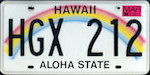 Image of the Hawaii state license.