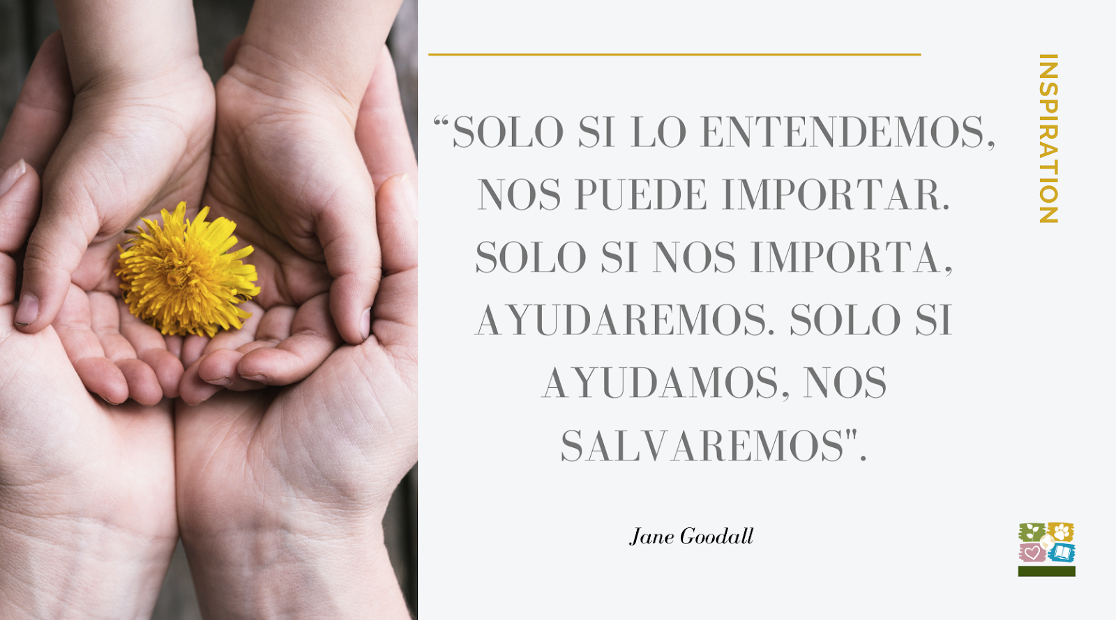 """Foto de manos con flor y luego el texto: """"Sólo si lo entendemos nos puede importar. Solo si nos importa, ayudaremos. Sólo si ayudamos nos salvaremos"""" Jane Goodall"""
