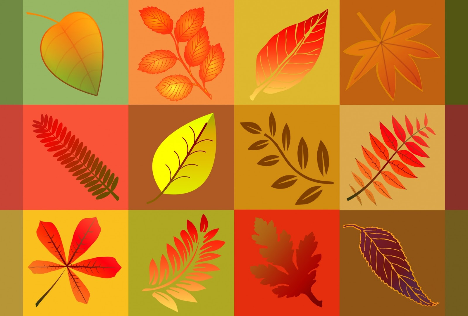Fall Leaves Background Free Stock Photo - Public Domain Pictures