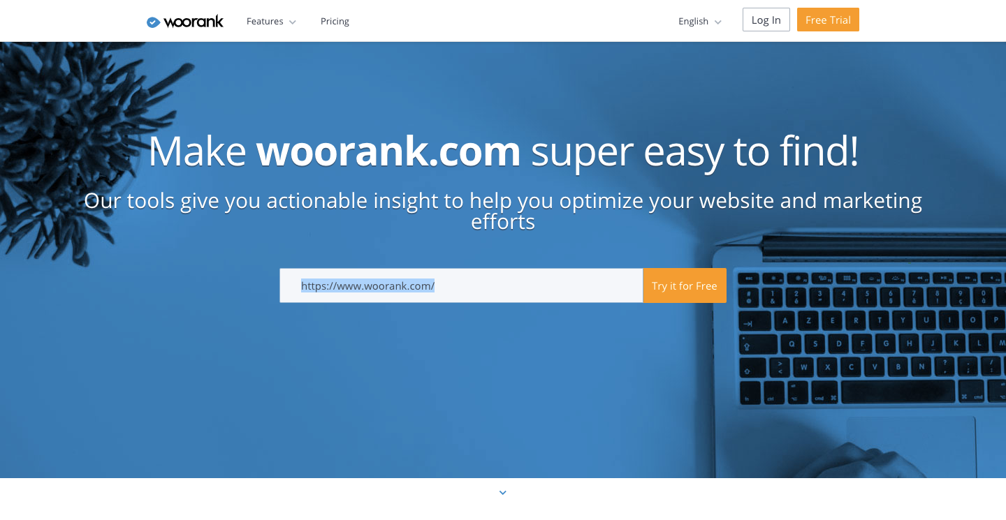 woorank seo monitor and ranking tool