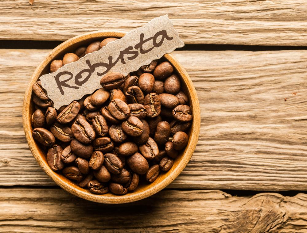 Các loại cà phê ngon – cà phê Robusta