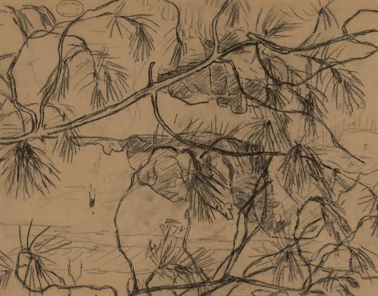 Alcide Le Beau (Lorient, 1873 ; 1943) La Rivière du Trieux à travers les pins, 1905 Crayon gras, cachet de l'atelier, 25 x 33 cm Coll. Musée de Pont-Aven, inv. 1993.2.3 © Musée de Pont-Aven