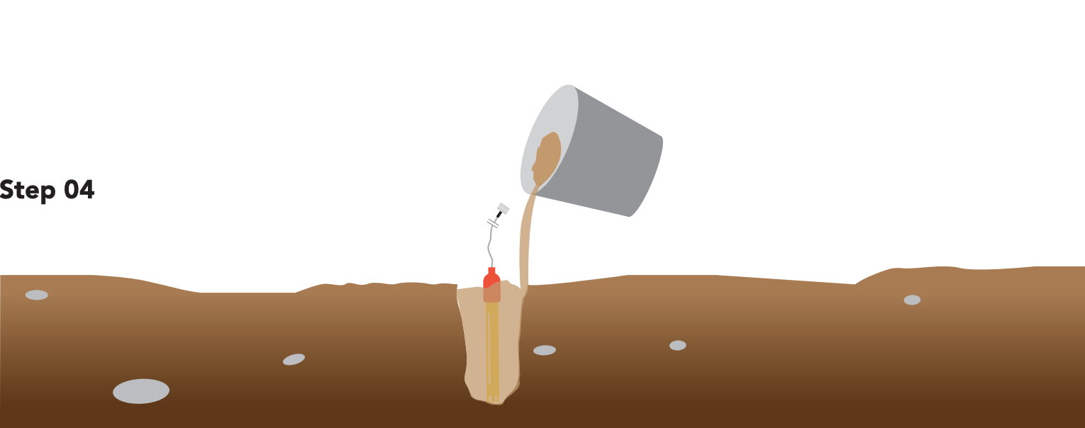 How to Measure the pH of Soil
