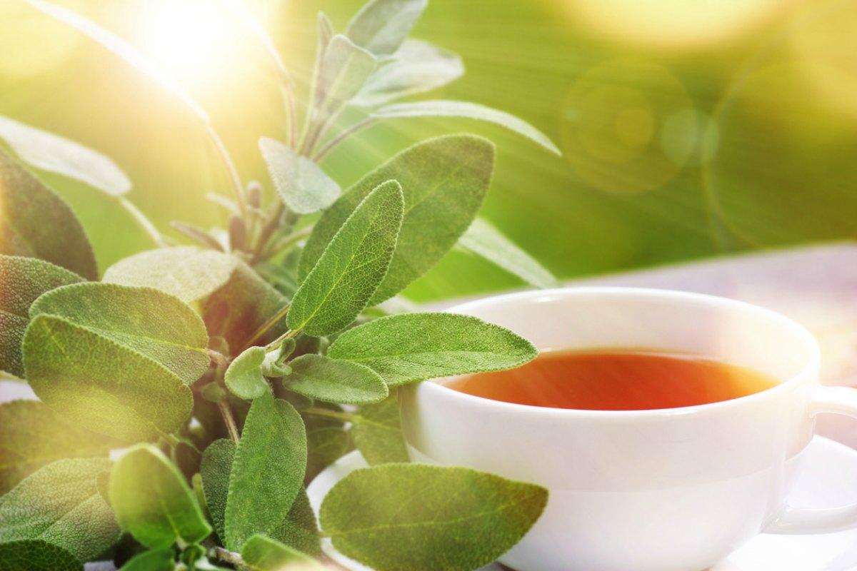 Té de Salvia y vinagre de manzana