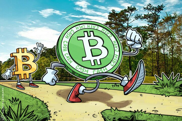 Bitcoin and Bitcoin Cash walking on a path