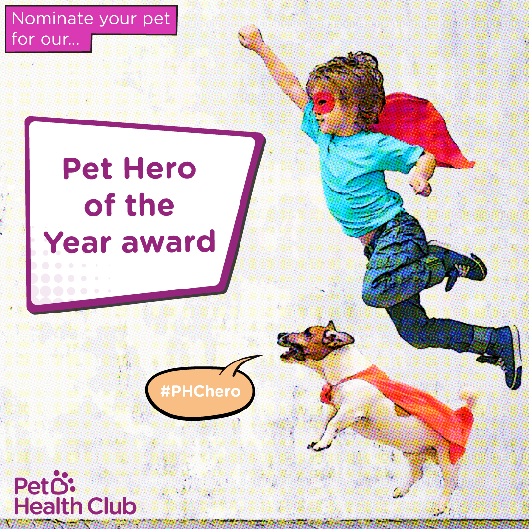 """""""Nominate your pet for Pet Hero of the Year award"""""""