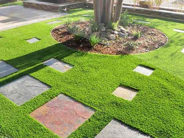 Hãy đến với Cây Canh Miền Nam để được thực hiện trồng cỏ chuyên nghiệp