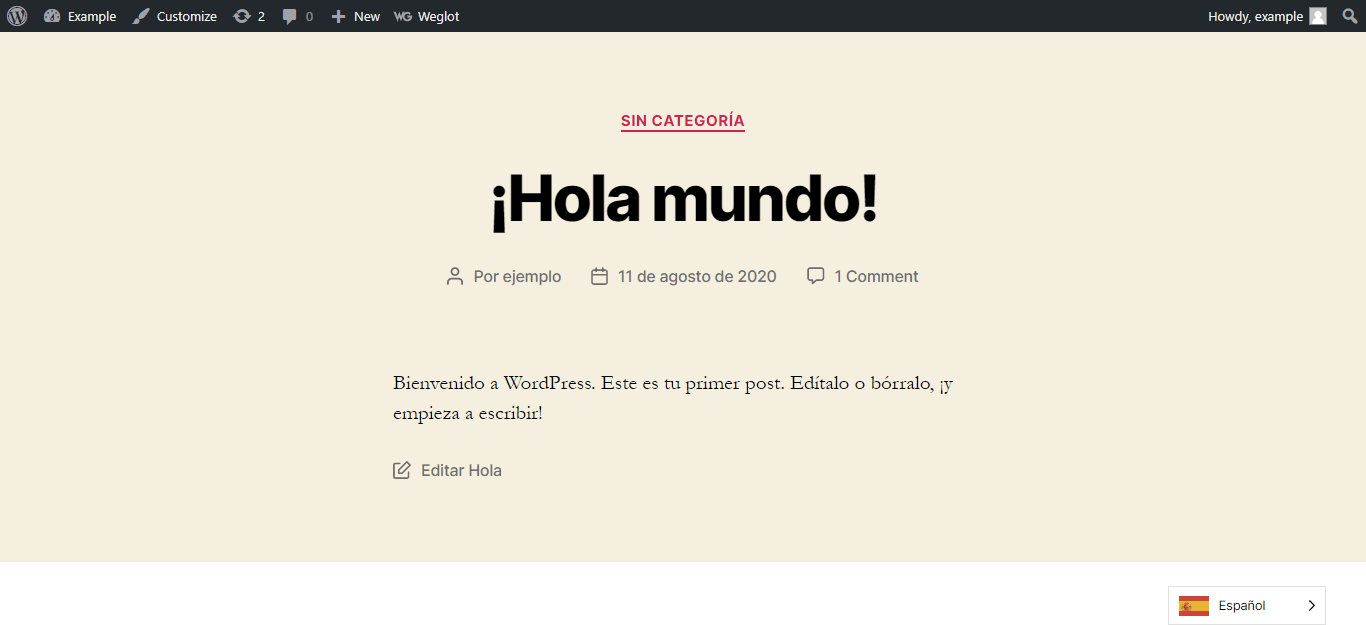 Display of a Demo Website that has been translated into Spanish