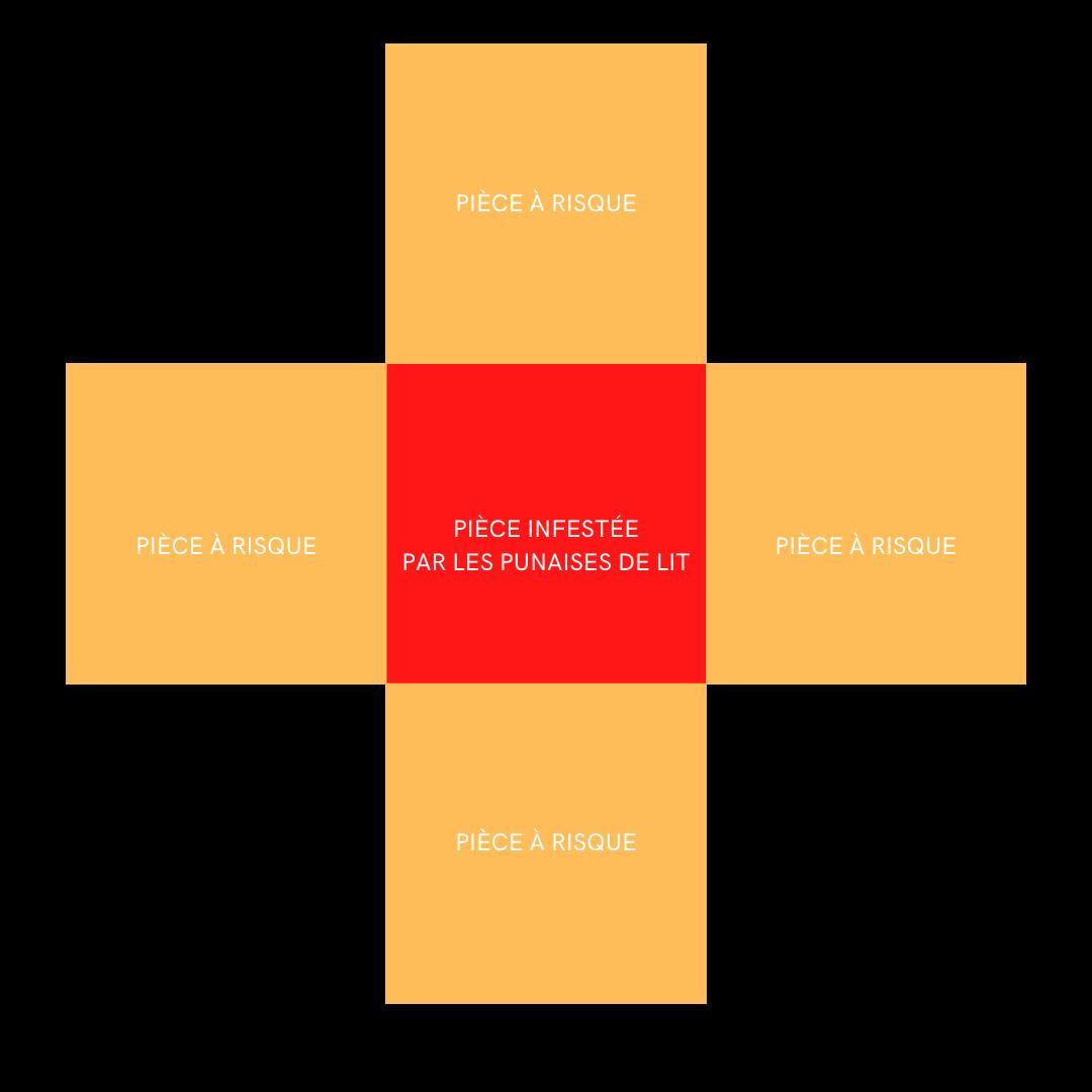 propagation punaises de lit : murs creux
