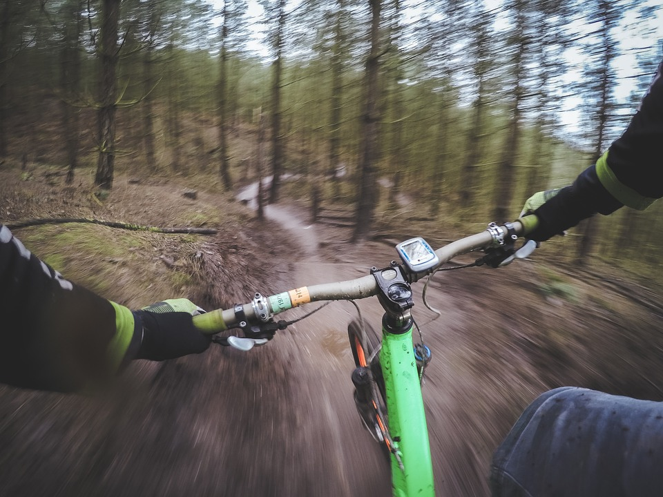 Mountain biker on wooded trail. Fitness holiday in Brisbane