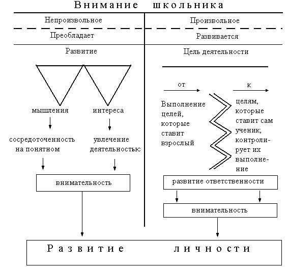 диагностика на наличие паразитов в организме