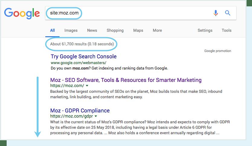 количество страниц сайта в результате поиска