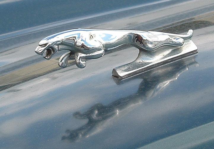 Jaguar.badge_-_original.jpg