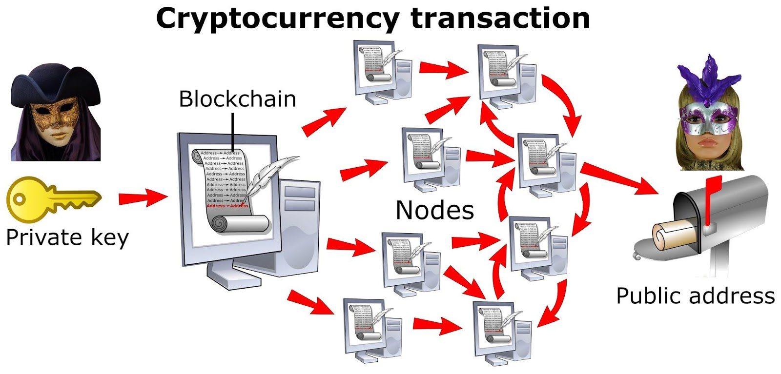 Cryptocurrency Transaction Fees