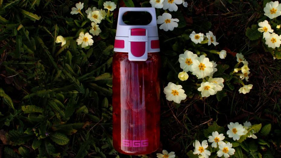 TOP Water bottle brands sigg