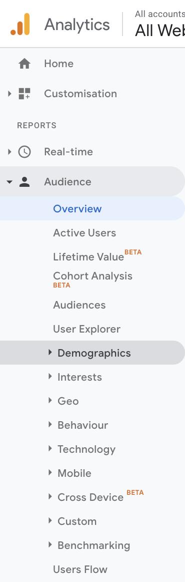 Audience demographics- Google Analytics