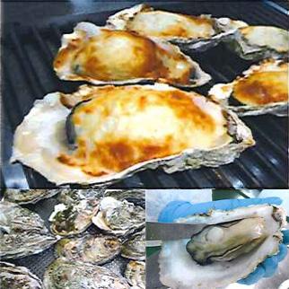 三陸牡蠣のまるごと入った焼きかまぼこ