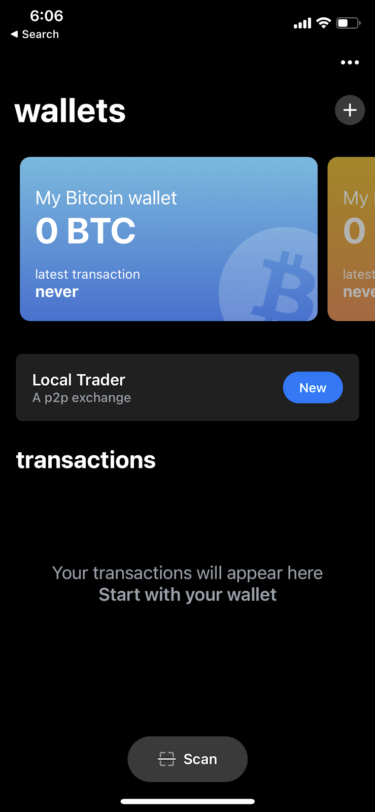 Screenshot of the BTC interface from Blue Wallet.