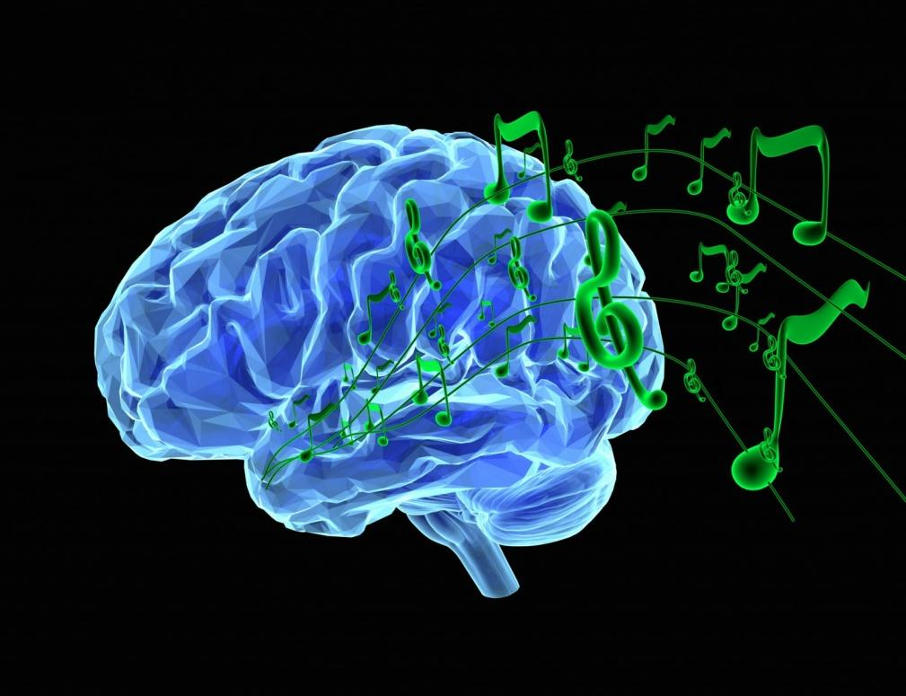 Image result for Music has influences brain development