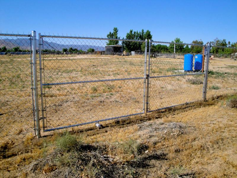 chain link fence and gate for animals