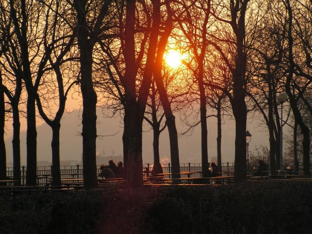 парк Стромовка закат