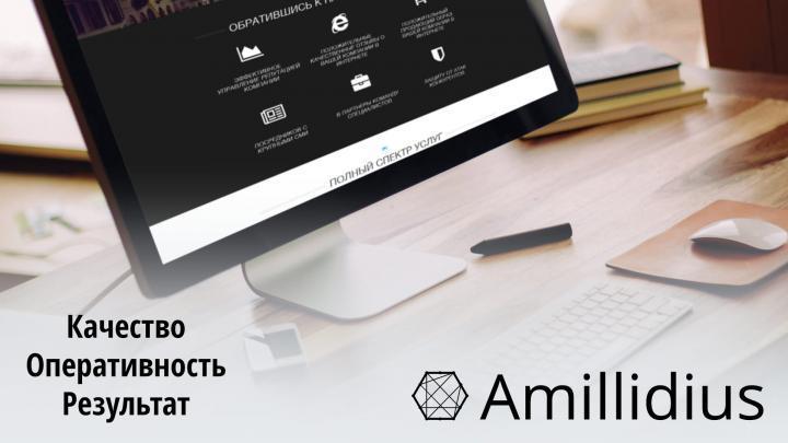 Профессиональные услуги от Amillidius отзывы на высшем уровне
