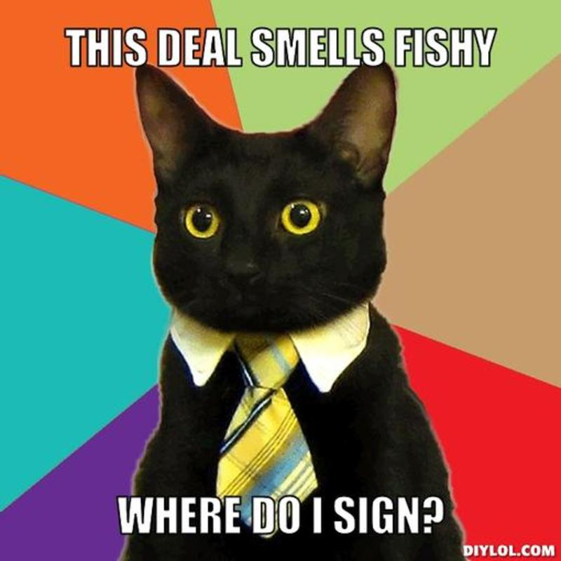 resized_business-cat-meme-generator-this-deal-smells-fishy-where-do-i-sign-e37b7c.jpg